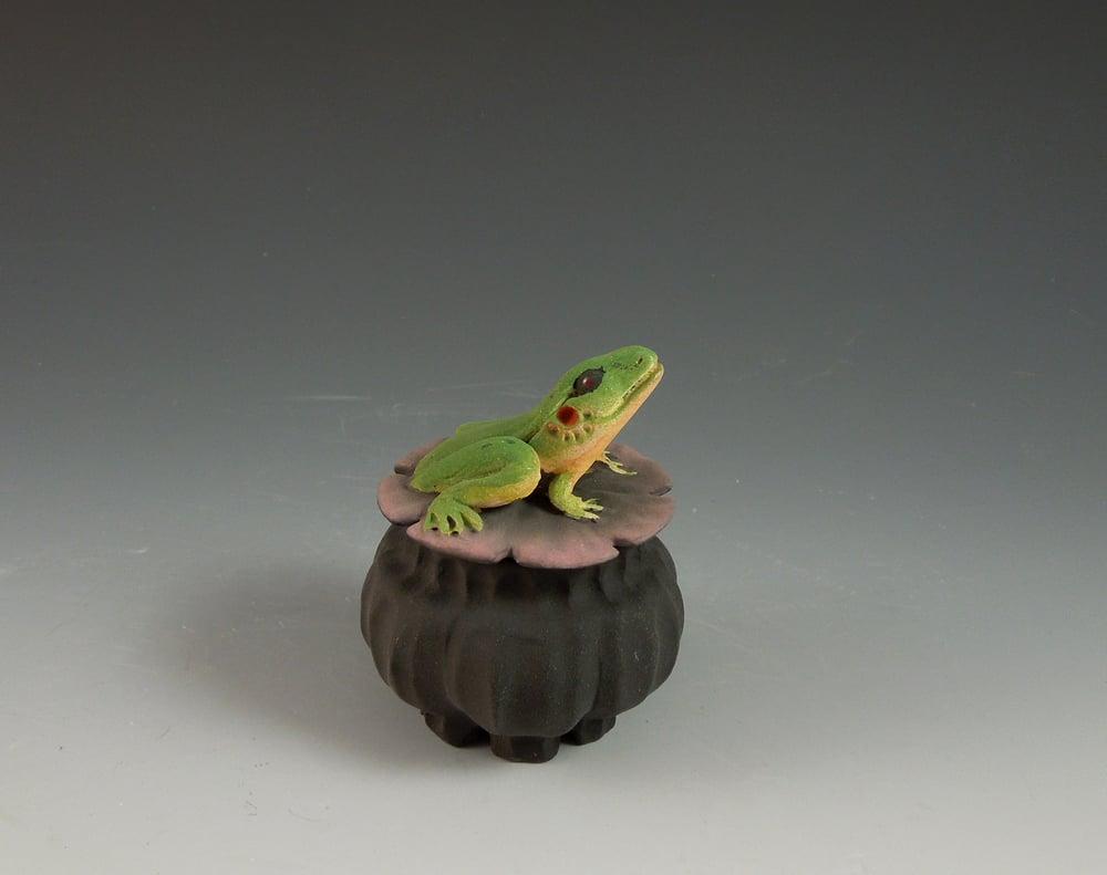 Image of Mini Frog Box