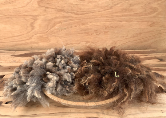 Image of Newborn Prop Set, 2 Felted Furs in Beige and Brown. (SET45) Ready to Ship.