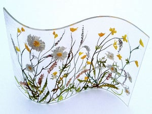 Dog daisies, buttercups and lark song