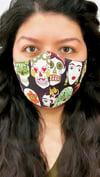 Frida Face Mask