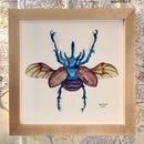 Image 5 of Small Framed Bug Prints