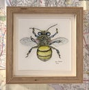 Image 4 of Small Framed Bug Prints