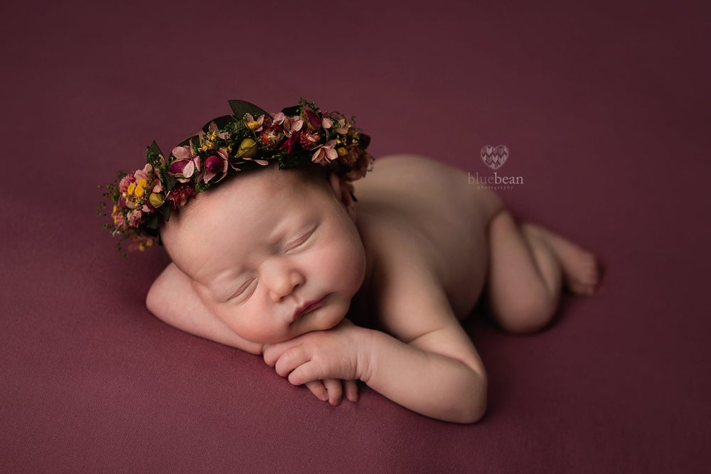 Image of Blue Bean Photography ~ Newborn Session Fee