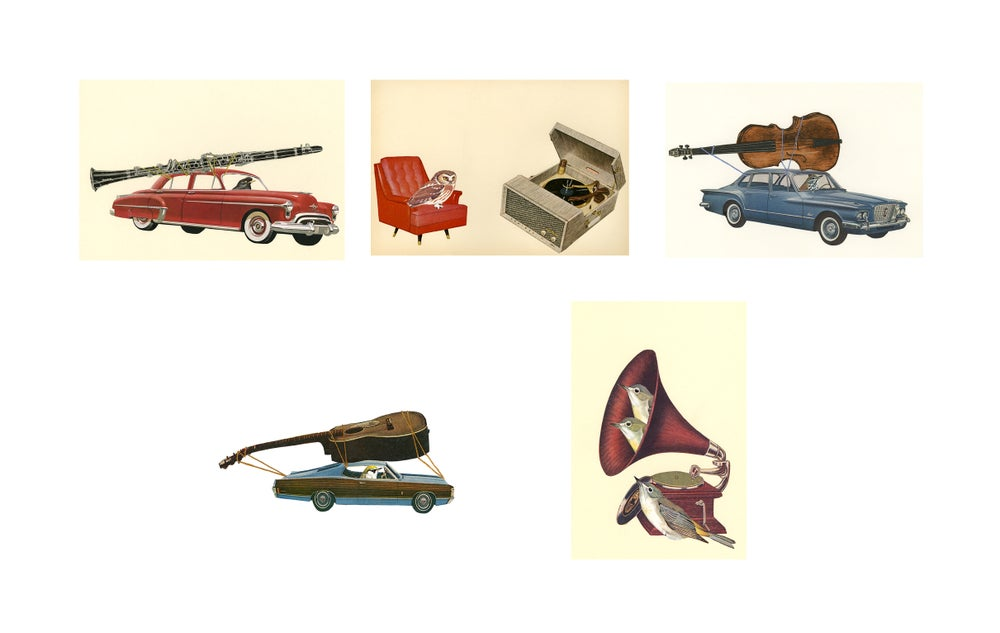 Image of Music Appreciation greeting cards.