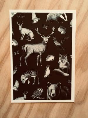 Image of Affichette format A5 « Le bestiaire de la Forêt « / vert sapin