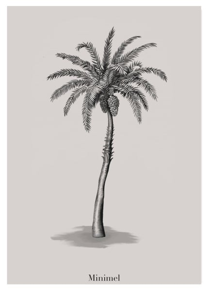 Image of Affichette format A5 « Palm Tree »