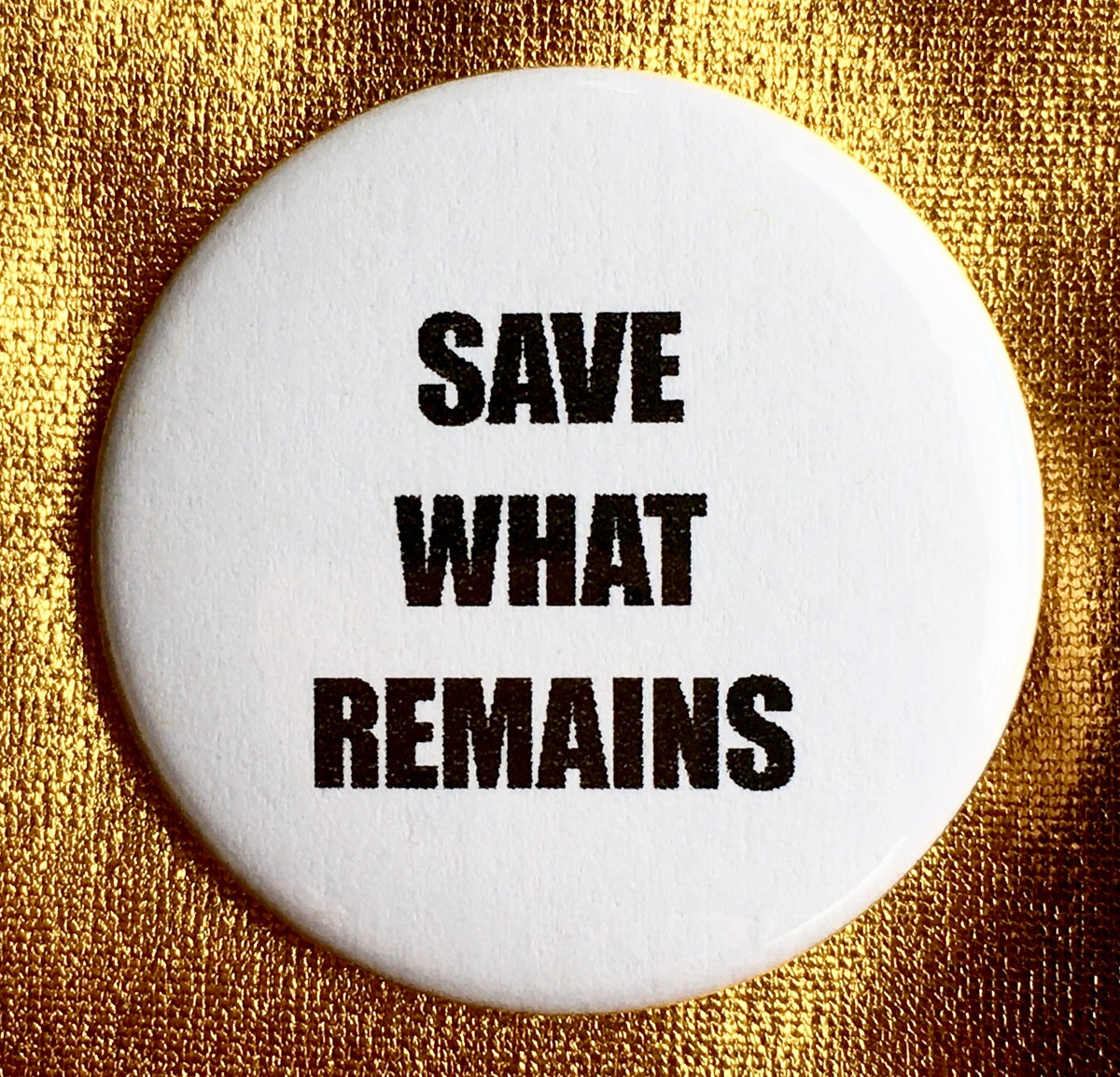 Image of Button #36 (Save What Remains)