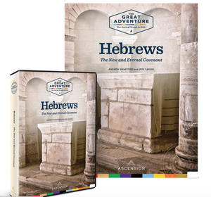 Image of Hebrews: The New and Eternal Covenant Dr. Andrew Swafford and Jeff Cavins, Workbook