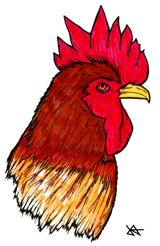 Image of Rooster Print