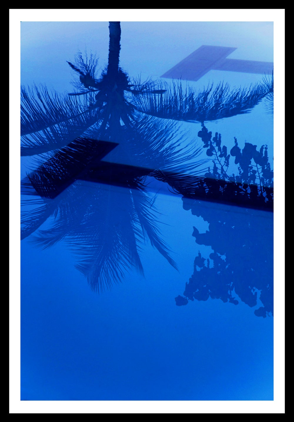 Image of Blue. St. Croix, USVI. 2016