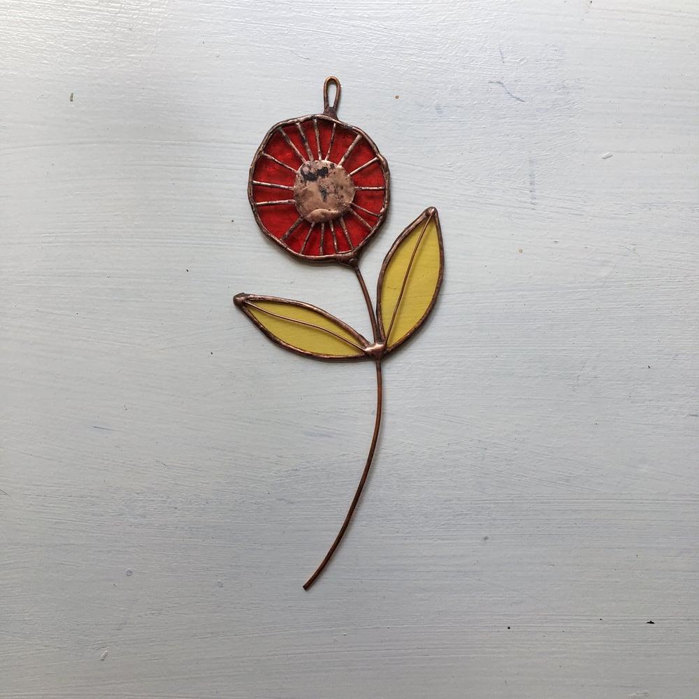 Image of Red Poppy Stem - ABJ x BreatheLiveExplore