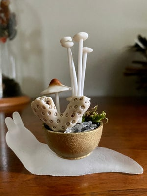 Image of Choose Your Snail Bowl - #9
