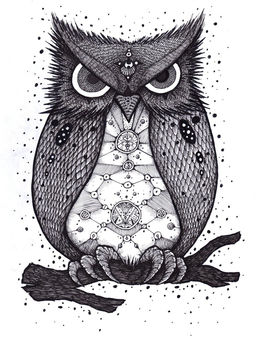 Image of Owl Shirt