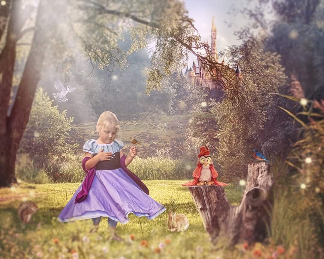 Image of Aurora - Sleeping Beauty