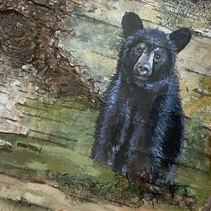 Image of Black BEAR on birch original