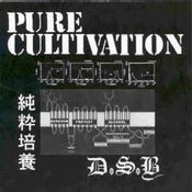 Image of D.S.B. (JAPAN) 'PURE CULTIVATION' 7""