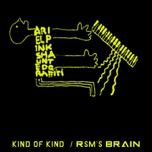 "Image of BIGLOVE007 ARIEL PINK'S HAUNTED GRAFFITI ""KIND OF KIND"""