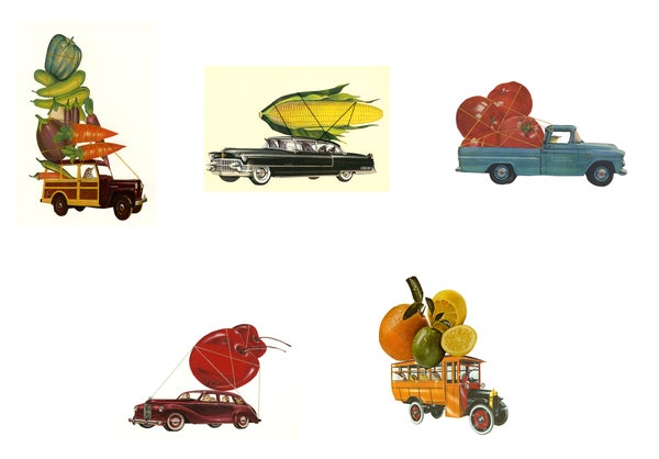 Image of Fresh Produce greeting cards.