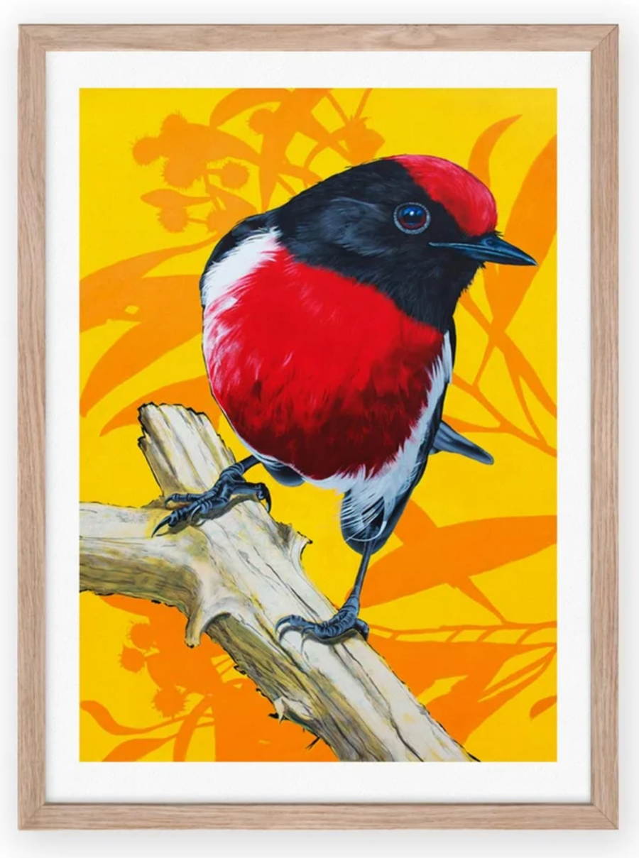Image of A4 Red Robin Print ON SALE!