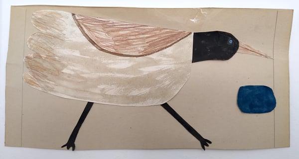 Image of Water bird - black head