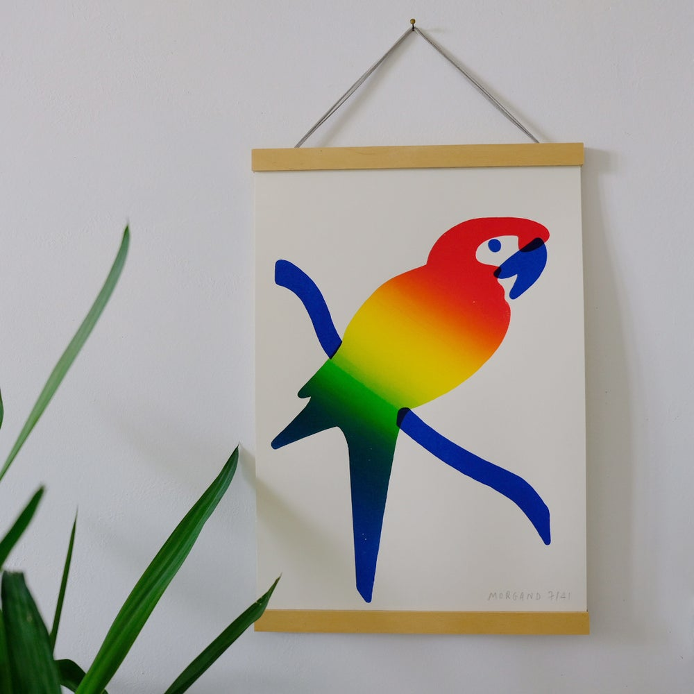Image of Rainbow Parrot