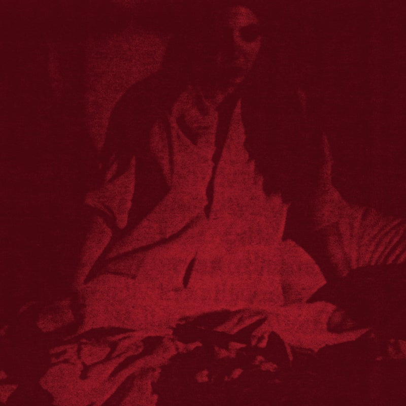 The Cherry Point - Night of the Bloody Tapes CD