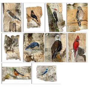 Image of MINI PRINT set  / #BIRDSonbirch 2020