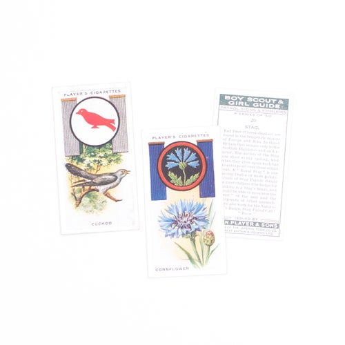 Image of Boy Scout & Girl Guide Cigarette Cards - Set of 8