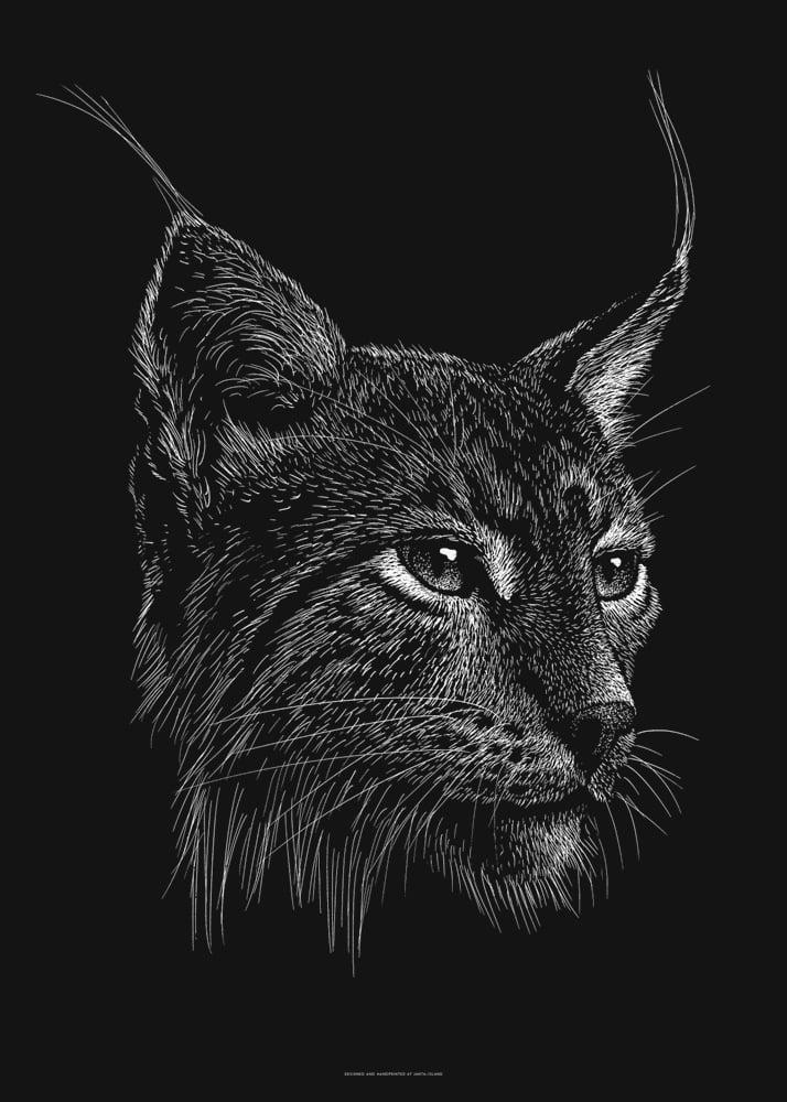 Image of »Luchs« Artprint