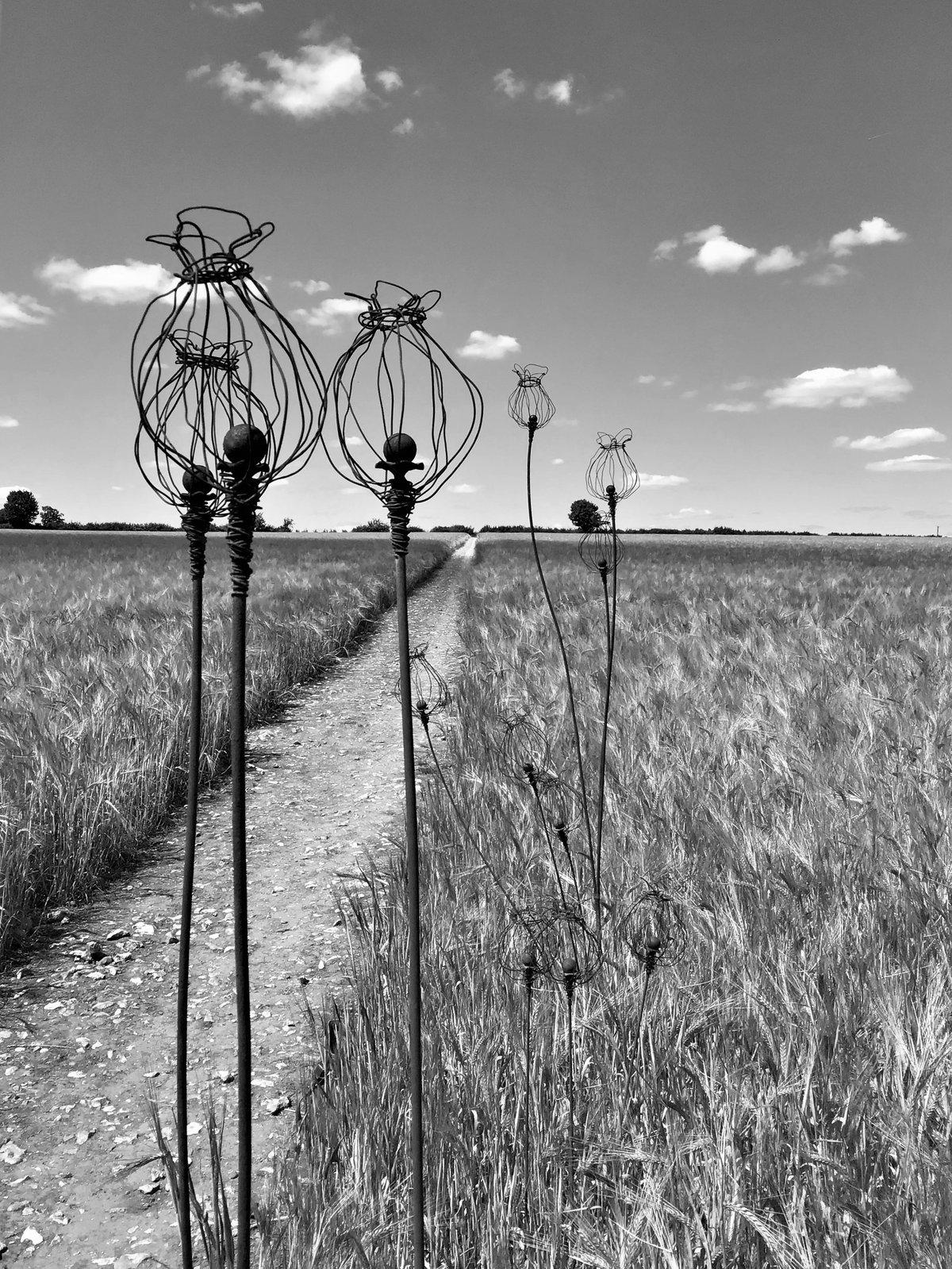 Wire Poppy seed Garden Sculpture