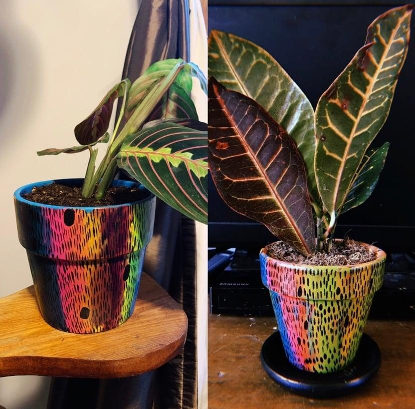 Image of Custom Planter