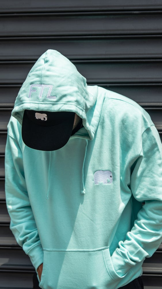 Image of Elephant Embroidered Hoodie (Mint)