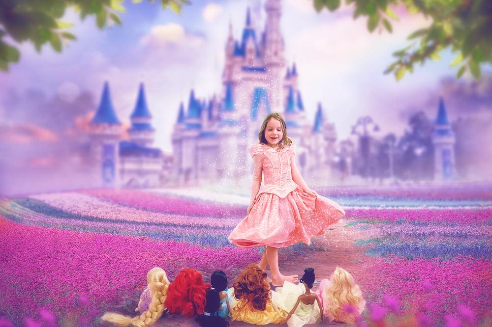 Image of Princess Castle
