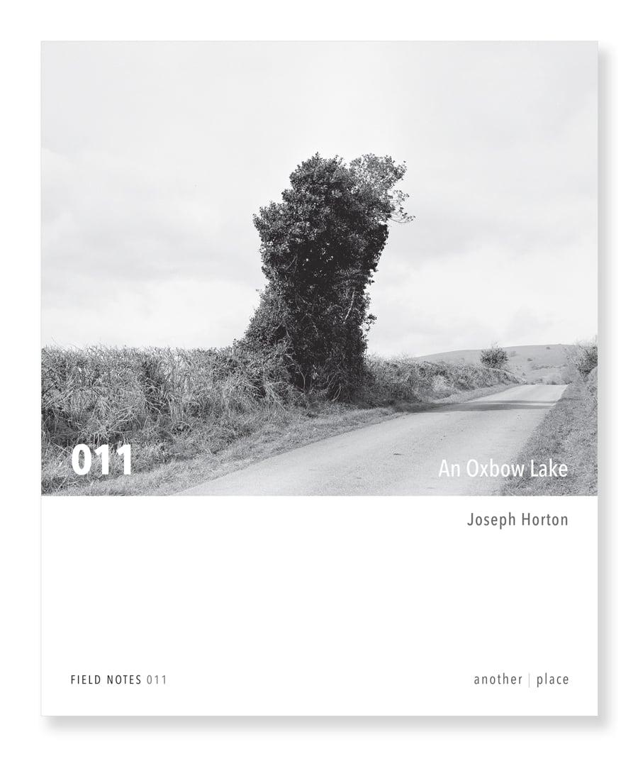 An Oxbow Lake - Joseph Horton
