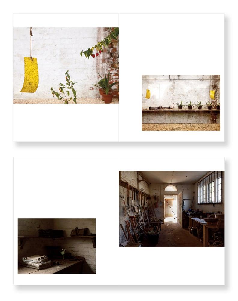 Image of Garden Stories - Amanda Harman