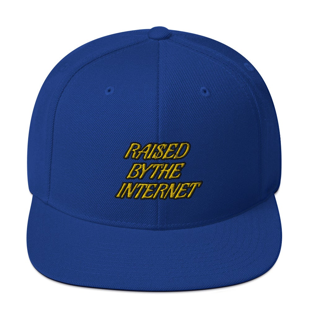 Image of Raised By The Internet SnapBack