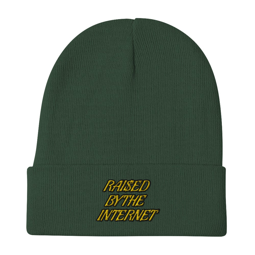 Raised By The Internet Beanie