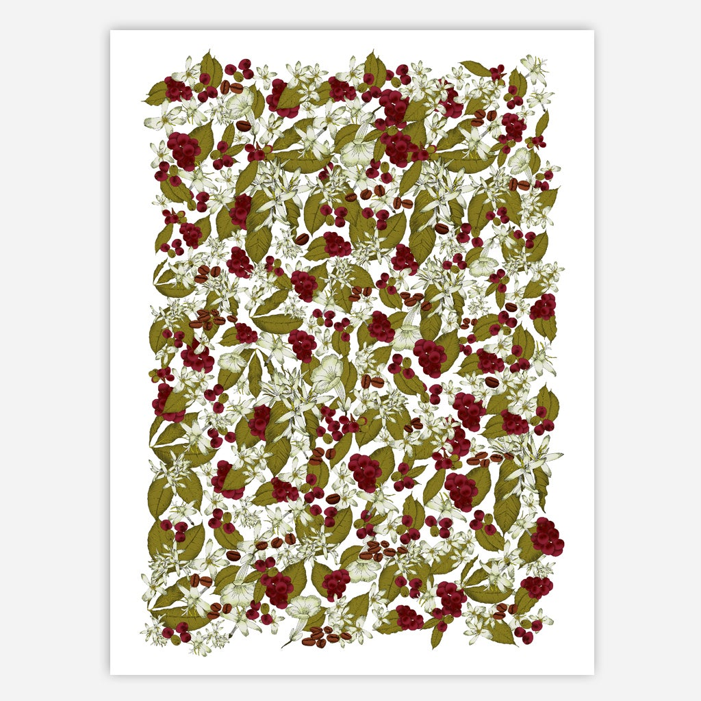 Image of COFFEE PLANT PATTERN 50x70CM