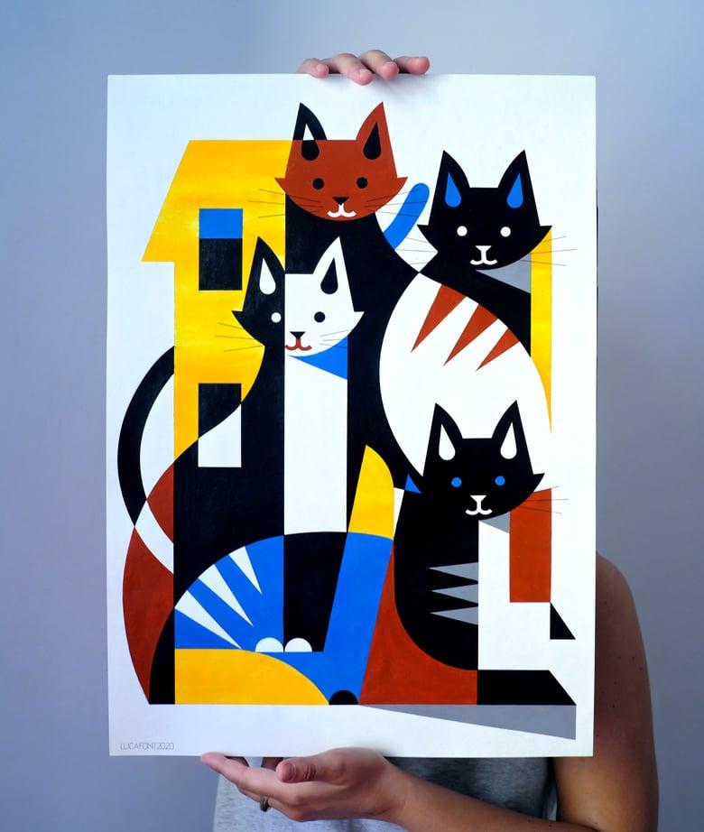 Image of Kittens!