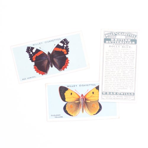 Image of British Butterflies Cigarette Cards - Set of 8