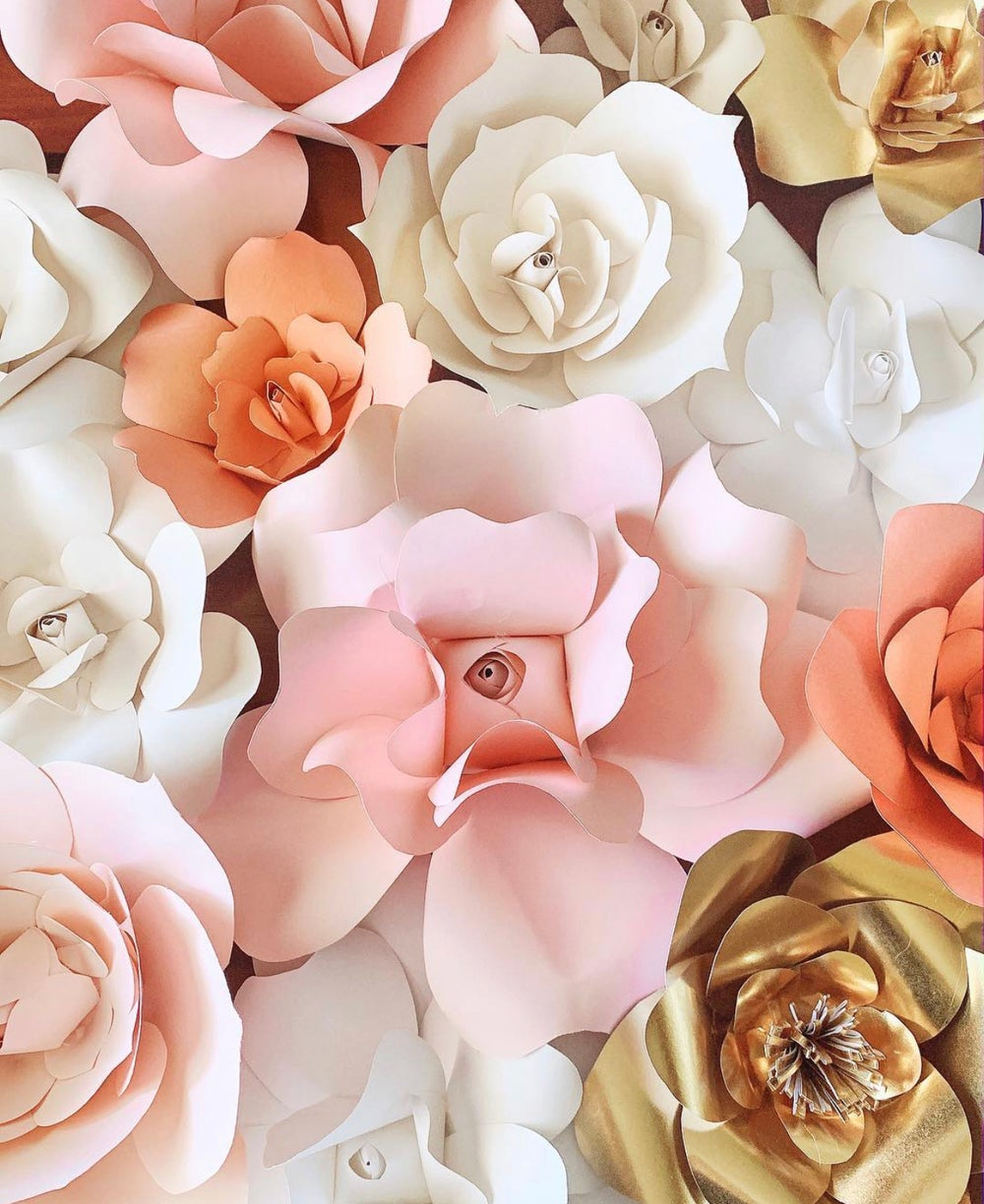 Image of Paper Blooms
