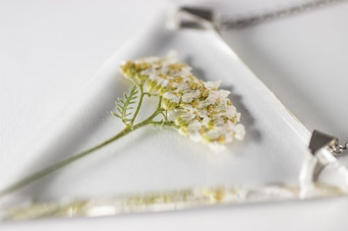 Image of Yarrow (Achillea millefolium) - Triangular Pressed Pendant #2
