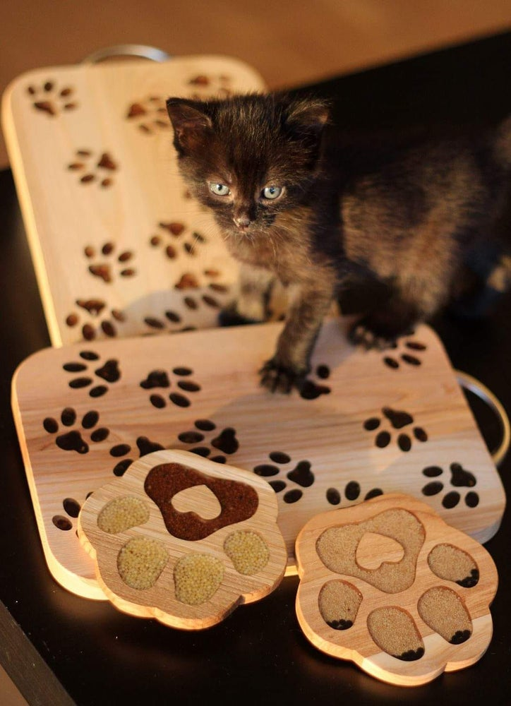 Image of Paw board
