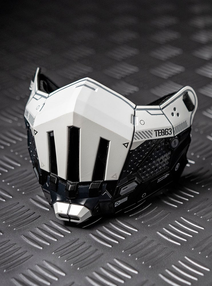 Image of TEQ63 TACTICAL HALFMASK PREORDER