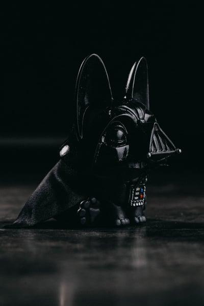 Image of Gwen Vader