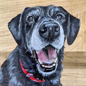 """10"""" x 10"""" Pet Portrait"""