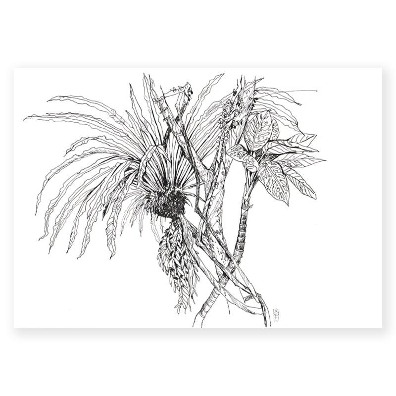 """Image of Original Painting - """"Asplenium nidus"""" - 21x29,7 cm"""