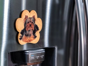 Image of Yorkie Magnet