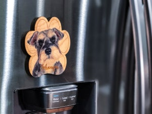 Image of Schnauzer Magnet