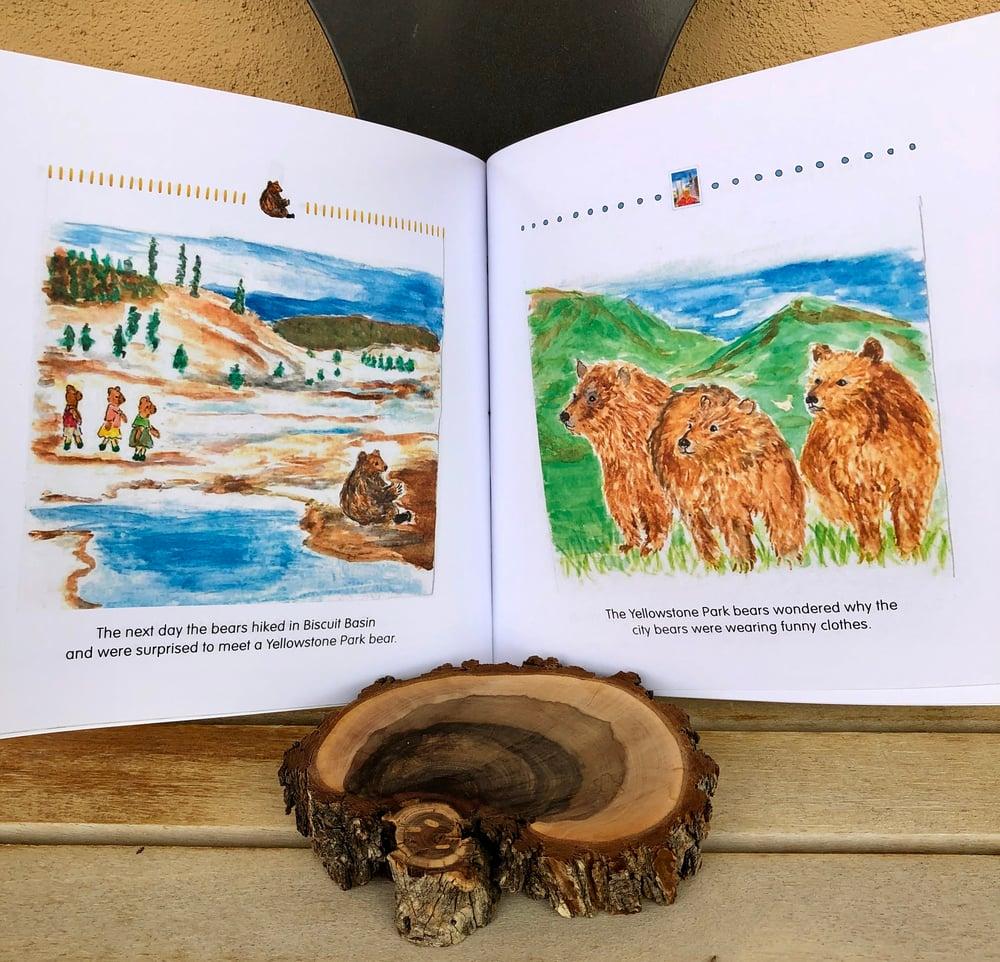Image of Bear Book
